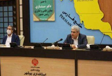 ستاری: استان بوشهر با کمک دانشبنیانها به قطب فناوریهای نفت و گاز تبدیل میشود