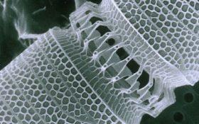 استفاده از شیشه انعطافپذیر برای ساخت میکروسکوپ
