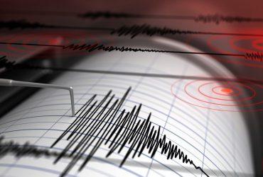 گوشیهای اندرویدی بزرگترین شبکه تشخیص زلزله در جهان