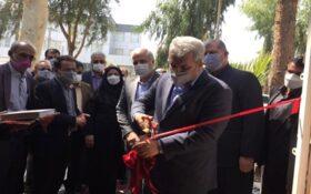 توسعه فناوریهای نوظهور در سیستان و بلوچستان؛ کارخانه نوآوری زاهدان گشایش یافت